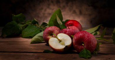 Apple Rustic Fruit Food Harvest  - Sponchia / Pixabay